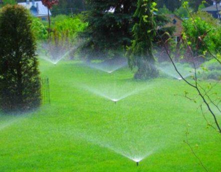 Водоподготовка для полива растений